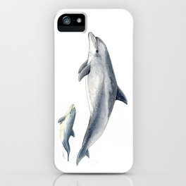 Bottlenose dolphin iPhone Case