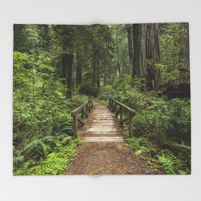 Walk Through Prairie Creek Redwoods State Park Throw Blanket