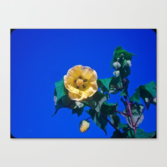 BLUE, YELLOW AND GREEN Canvas Print