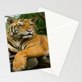 hai der tiger Stationery Cards
