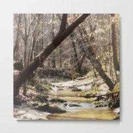 Mystic Creek Metal Print