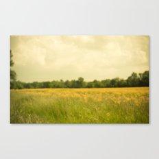 Waking Dream Canvas Print