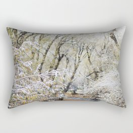 A Creek on a Snowy Day in Boulder, Colorado Rectangular Pillow