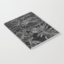 leavs Notebook