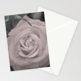Raining Roses Stationery Cards