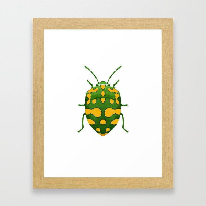 Physic Nut Stink Bug Framed Art Print