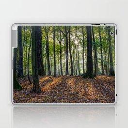 Beech Woodland Sunrise Laptop & iPad Skin