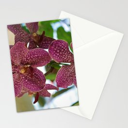 Lincoln Dancer II Stationery Cards