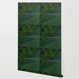 germany grass vertical view hattingen forrest drone green Wallpaper