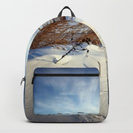 Snow Dunes 3 Backpack