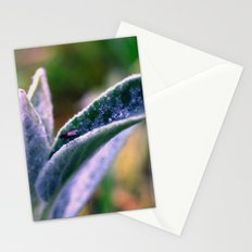 fly on Stachys leaf Photography - Nature - Garden - Plant  Stationery Cards