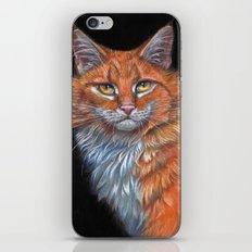 Red Cat P019 iPhone & iPod Skin