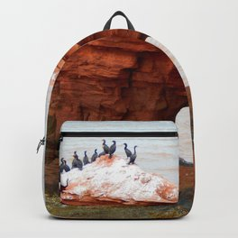 Cormorant Island Backpack
