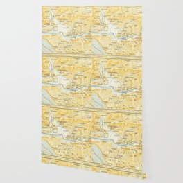 Vintage Map of Olympia Greece (1894) Wallpaper