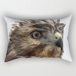 Watercolor Bird, Red-tailed Hawk 05, Middletown, Maryland, Backyard Downpour Rectangular Pillow