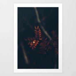 Like Burnt Nerves Art Print