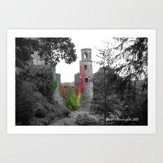 Blarney Castle Art Print