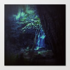 Hidden... Canvas Print