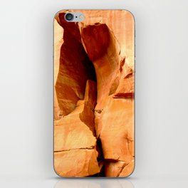 The Cleft of the Rock iPhone Skin
