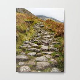 The Pony Trail Metal Print