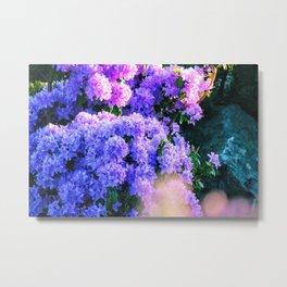 Purple Sun Spots Metal Print
