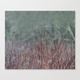 In the Marsh Canvas Print