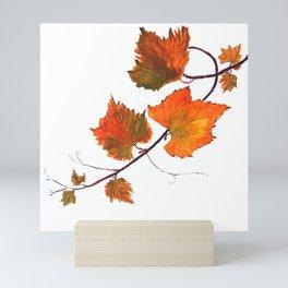grapevine in autumn Mini Art Print