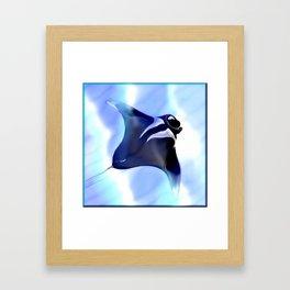 Manta Rays Framed Art Print