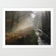 Remote country road through mist and woodland at sunset. Norfolk, UK. Art Print