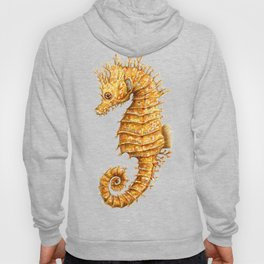 Sea horse, Horse of the seas, Seahorse beauty Hoody