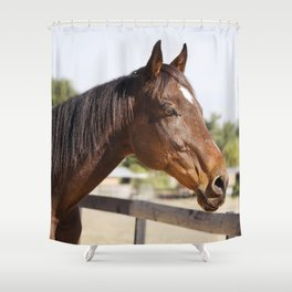 Handsome Gulliver Shower Curtain