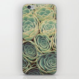 Sea of Succulents iPhone Skin