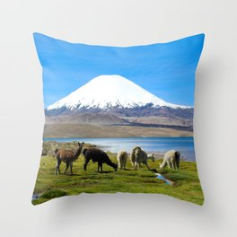 Chungara Lake, Chile Throw Pillow