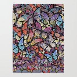 butterflies aflutter colorful version Poster