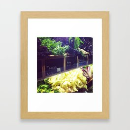 Baby Greens Framed Art Print