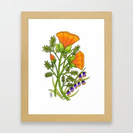 Calistoga Framed Art Print