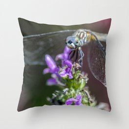 Blue eyed Dragonfly Throw Pillow