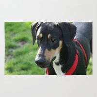 doberman Area & Throw Rugs featuring Doberman by Ornithology