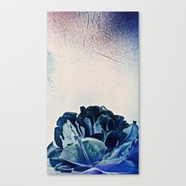 Blue Tulip- Scratched And Grungy Canvas Print