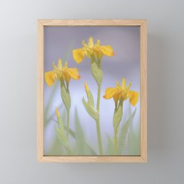 Wild Summer Iris Framed Mini Art Print