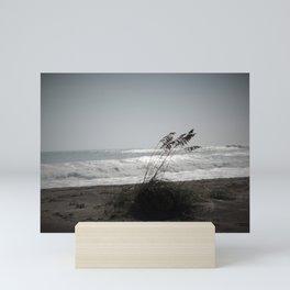 Sea oats in the wind Mini Art Print