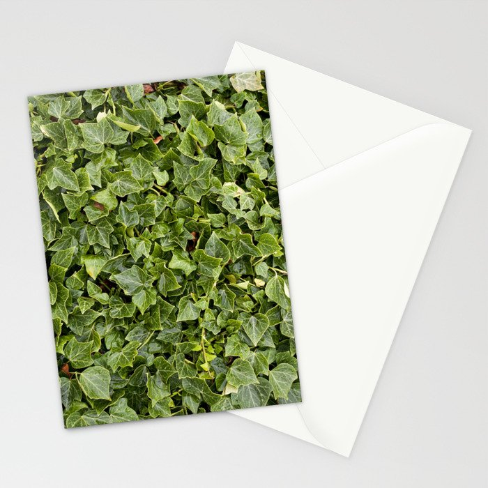 Green Leafs Stationery Cards