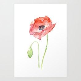 Red Poppy Flower Flowers Art Print