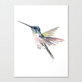 Flying Little Hummingbird Canvas Print