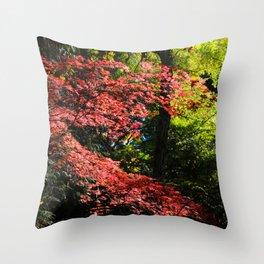 autumn in the light Throw Pillow