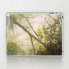 Summer Finch Laptop & iPad Skin