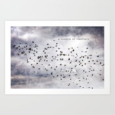 A Scourge of Starlings Art Print