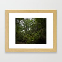 cataract trail after the rain Framed Art Print