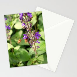 Garden Bee, 2 Stationery Cards