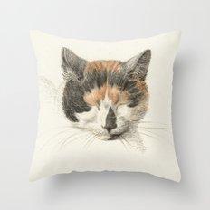 Vintage Cat Illustration II Throw Pillow